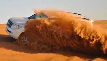 dune bashing desert safari